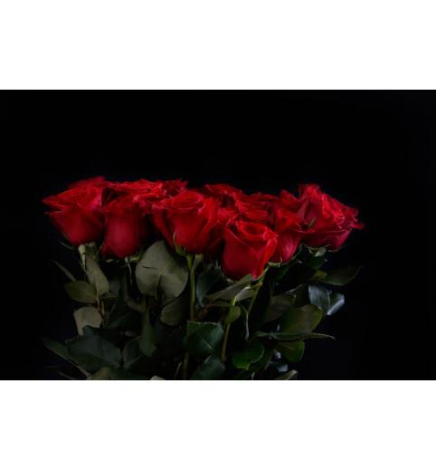 "Троянда червона ""Еквадор""  90 см"
