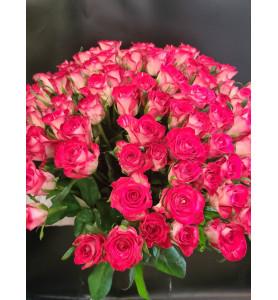 Троянда рожева